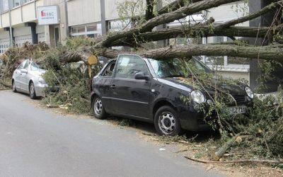 Stormen drukken resultaat schadeverzekeraars