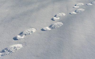 Domme inbreker laat voetstappen achter in de sneeuw
